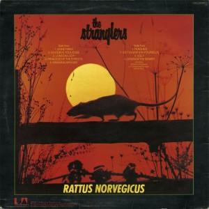 rattus norvegicus - Les Stranglers