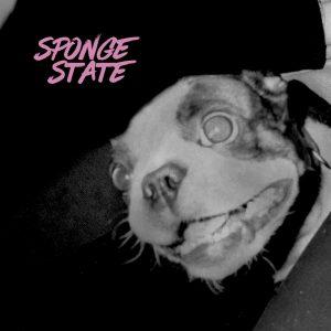 slotface sponge state