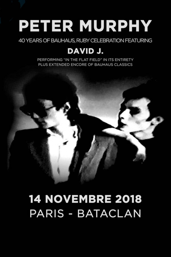 1787160_peter-murphy-40-years-of-bauhaus-ruby-celebration-featuring-david-j-bataclan-paris-11