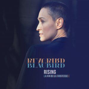Blaubird