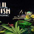 LILFISH_ORGANIC