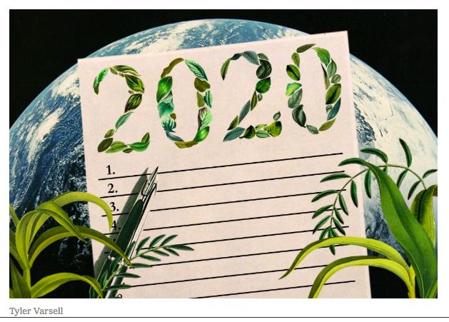 l'écologie n'est pas une résolution mais une obligation. Le développement durable est une solution.