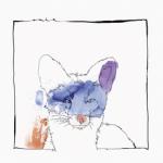 Nico Stojan CARDANO EP